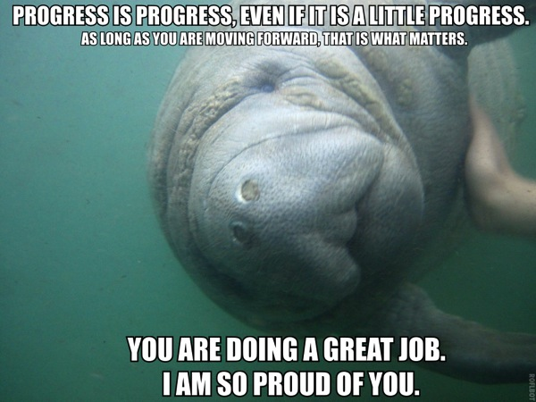 Calming manatee progress