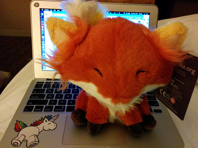 Firefox stuffed animal  installed
